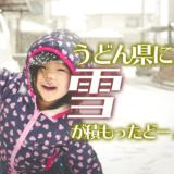 うどん県で積雪!この珍しい瞬間を遊びつくせー!